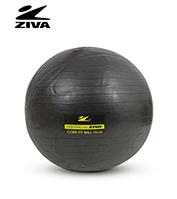 Equipo Fitnes Ziva ZVH-0075